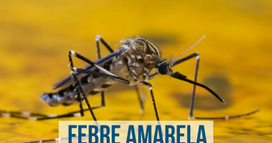 Febre amarela – Sintomas, transmissão e prevenção